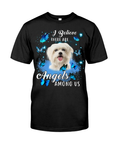 Maltese-Angels Among Us