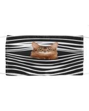 Somali Cat Stripes FM Cloth face mask front