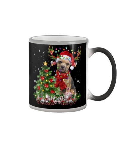 Border Terrier-Reindeer-Christmas
