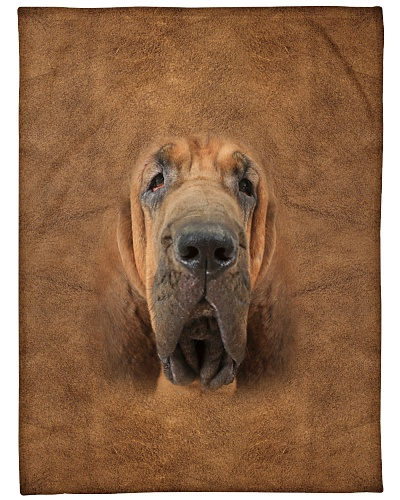 Bloodhound Face 3D