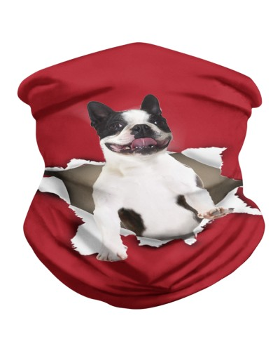 Boston Terrier Torn Paper BDN
