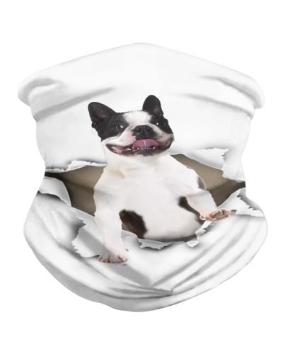 Boston Terrier Torn Paper BDN