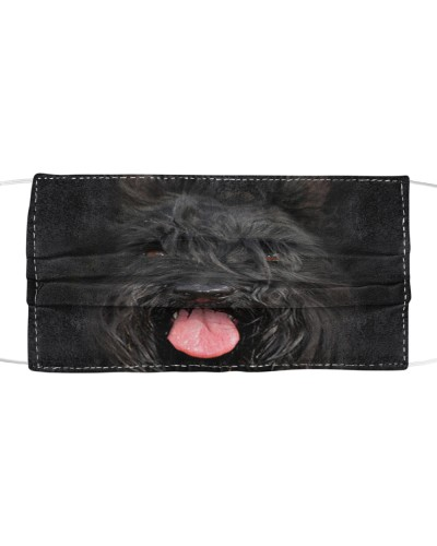 Scottish Terrier Lovely Face
