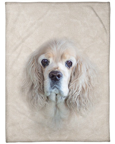 American Cocker Spaniel Face 3D
