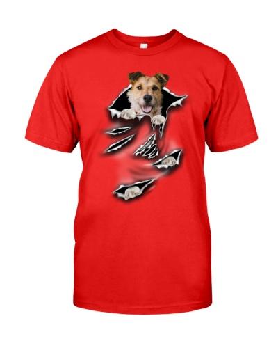 Wire Hair Fox Terrier-Scratch