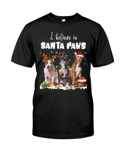 American Pit Bull Terrier-Santa Paws
