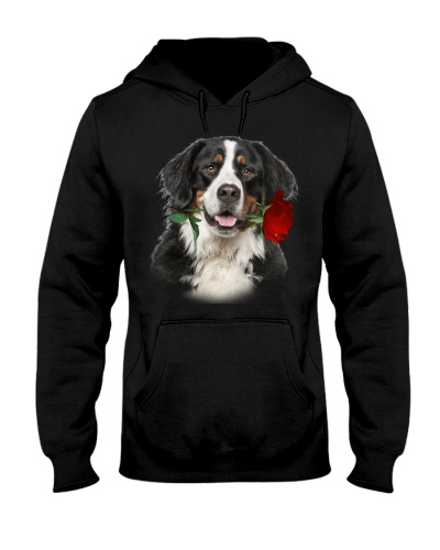 Bernese Mountain With Rose Branch