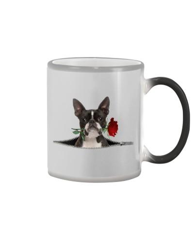 Boston Terrier-Rose-Zipper