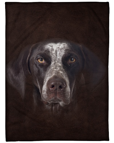 German Shorthaired Pointer Face 3D