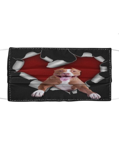 American Pit Bull Terrier Torn Heart Face