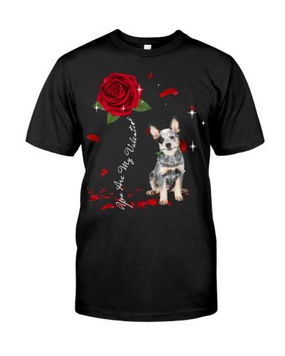 Australian Cattle is My Valentine-Rose