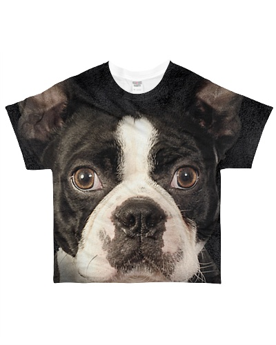 Boston Terrier-Face and Hair