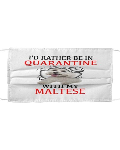 Quarantine With My Maltese Face