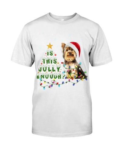Yorkshire Terrier-Jolly