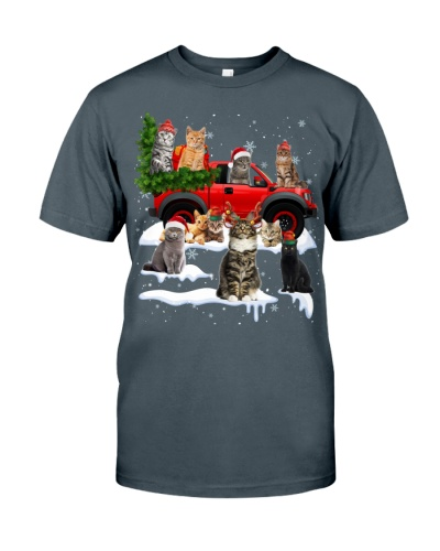 Cat-Christmas Car
