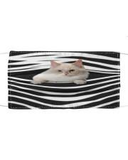 Ragamuffin Cat Stripes FM Cloth face mask front