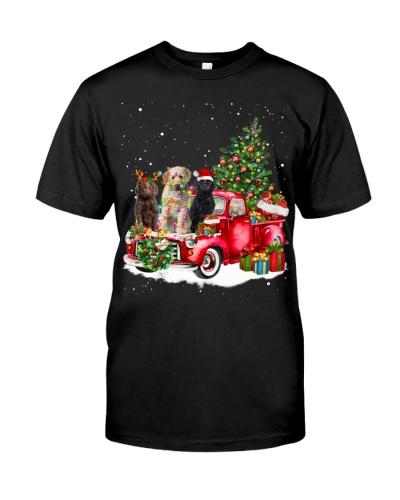 Labradoodle-Sitting On Car Hood