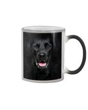 Black Labrador-Face and Hair Color Changing Mug thumbnail