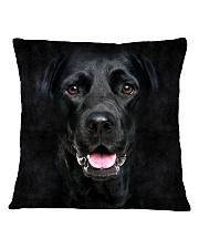 Black Labrador-Face and Hair Square Pillowcase thumbnail
