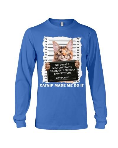 Maine Coon Cat - Catnip