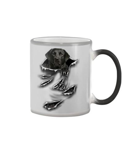 Black Labrador -Scratch