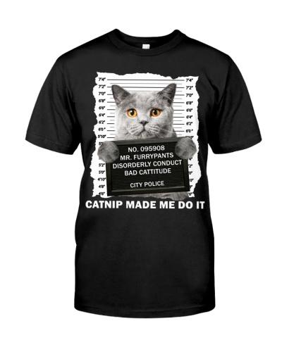 British Shorthair Cat - Catnip