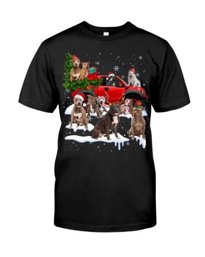 Pitbull-Christmas Car