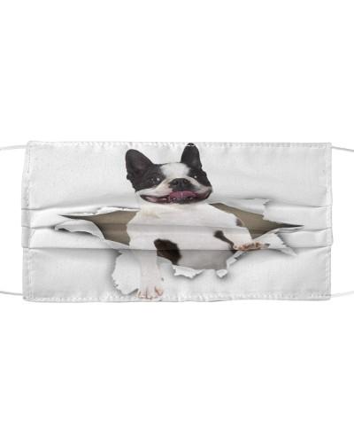 Boston Terrier Torn Paper Face