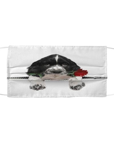 Springer Spaniel Rose Face