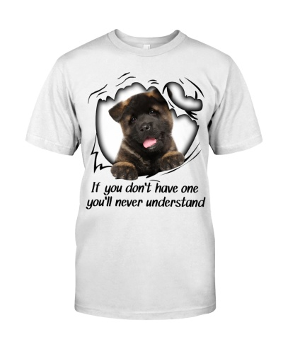 If You Dont Have Akita