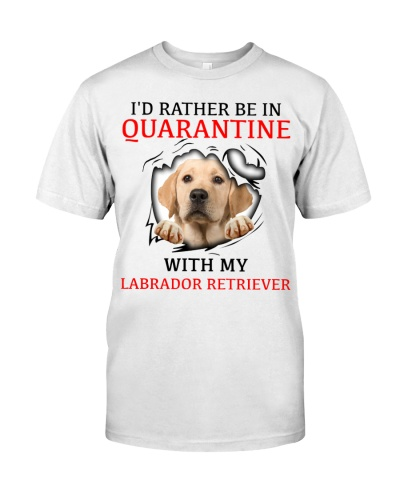 Quarantine With My Labrador Retriever