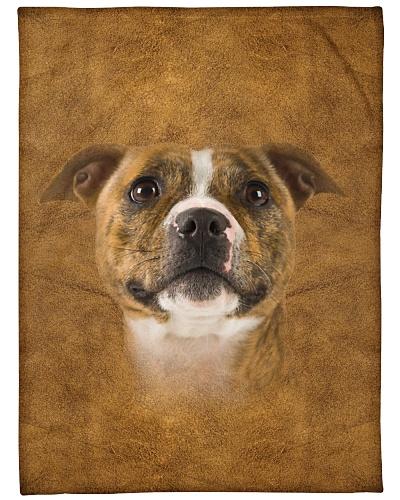 Staffordshire Bull Terrier Face 3D