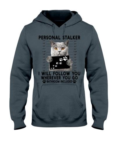 Personal Stalker British Shorthair Cat