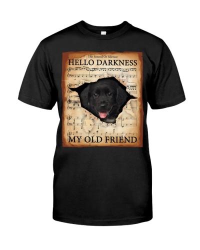 Stabyhoun Hello Darkness