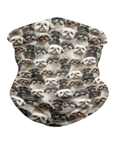 Shih Tzu Faces BDN