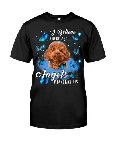 Poodle-Angels Among Us