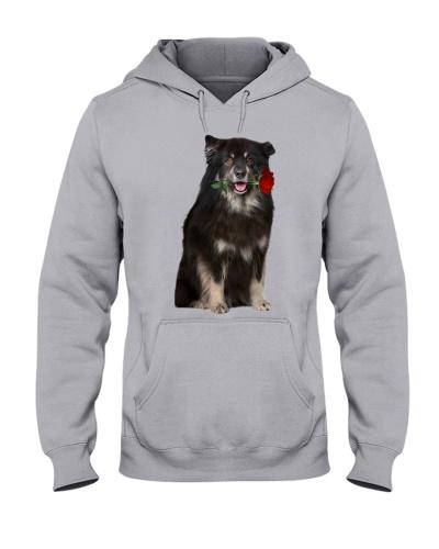Finnish Lapphund-Rose