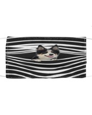 Tricolor Collie Stripes FM Cloth face mask front
