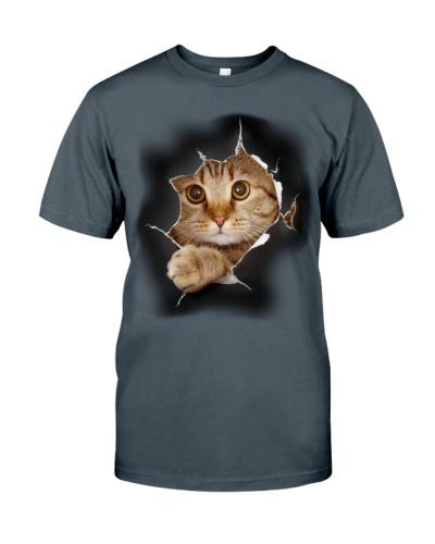 CAT - 3D