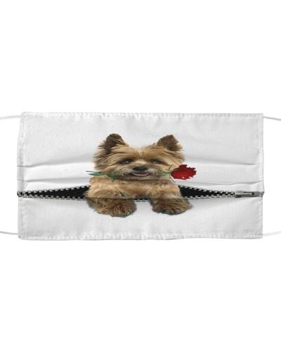 Cairn Terrier Rose Face