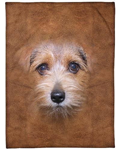 Norfolk Terrier Face 3D