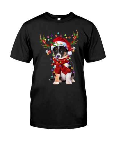 Border Collie-Reindeer