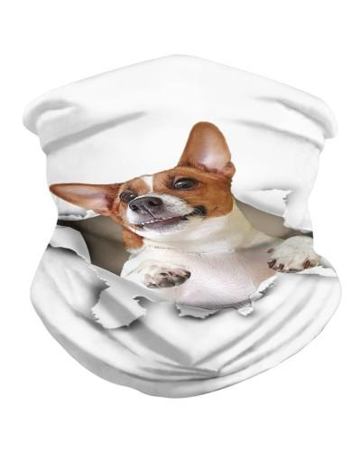 Jack Russell Terrier Torn Paper BDN