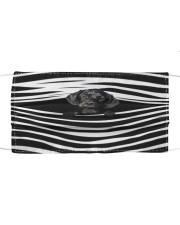 Springadore Stripes FM Cloth face mask front