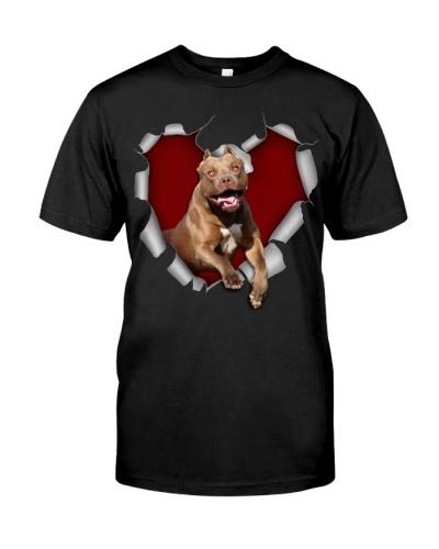 American Pit Bull Terrier 1 Torn Heart