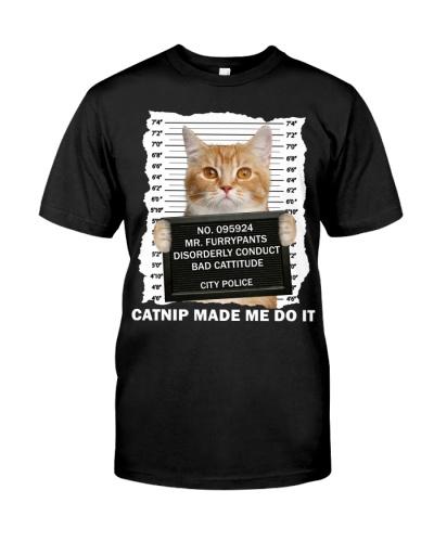 Munchkin Cat - Catnip