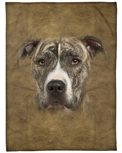 American Staffordshire Terrier Face 3D