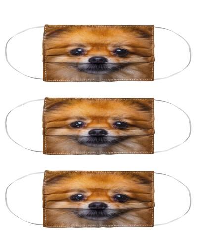 Pomeranian Face