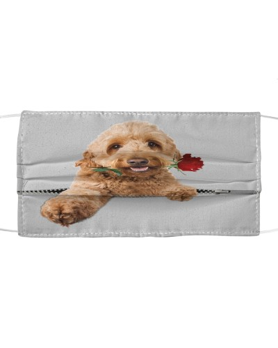 Goldendoodle Rose Face