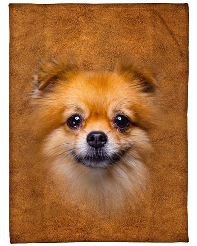 Pomeranian Face 3D